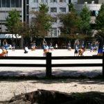 運動会色な冷泉公園