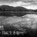 【終了】MEPhotoGallery:星原弘侑 写真展「自然〜共に生きる〜」