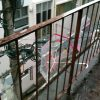 LOVE RAIN 冷泉荘、そして岡田斗司夫さん再び。
