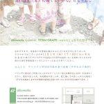 【終了】akioworks, TETRA+GRAPH 3周年記念ぱーちー「たまりばよねんめ」