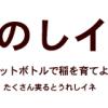 【終了】たのしイネ展 ~ビル屋上でのイネづくりがもたらすもの~【れいぜん荘ピクニック2014・春】