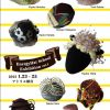 【終了】Energy Hat School Exhibition vol.1