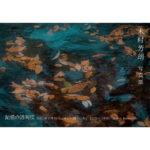 【終了】木村芳朗 写真展「記憶の透明度」